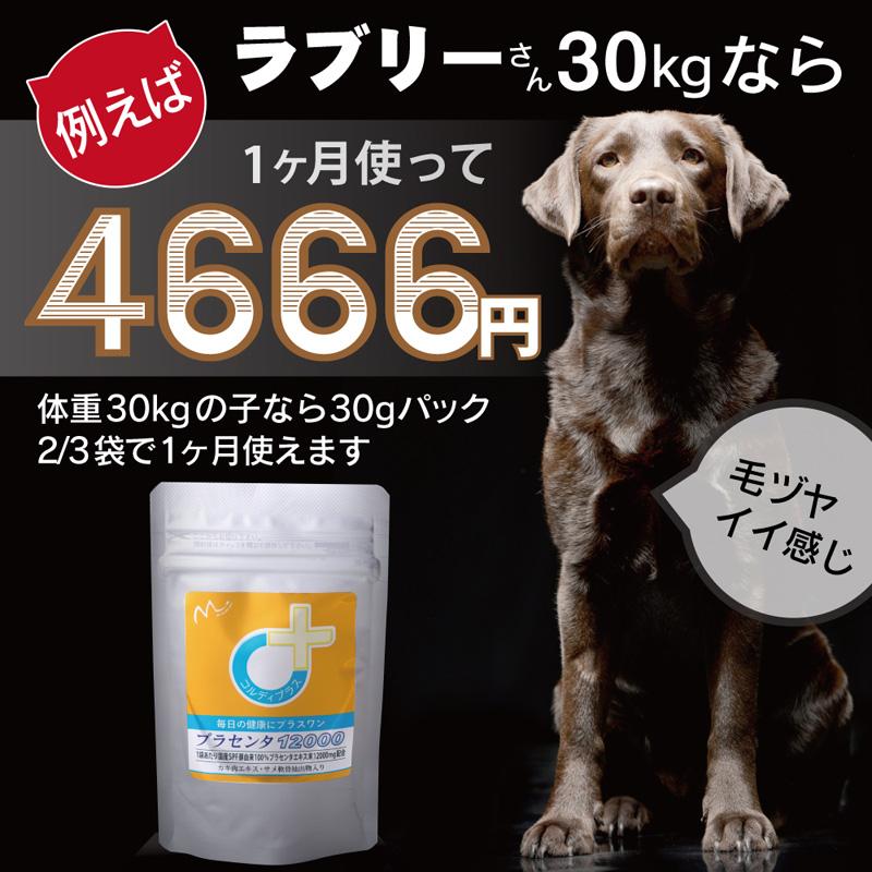 犬猫ペットの国産SPF豚プラセンタエキス末-2