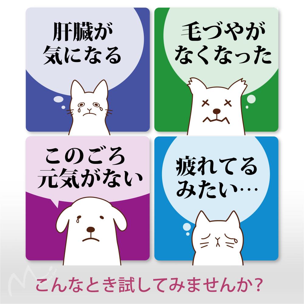 犬猫ペットの国産SPF豚プラセンタエキス末-4