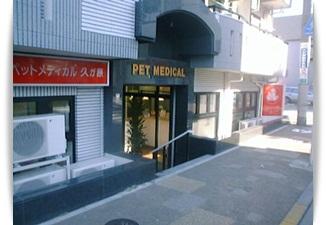 大田区の自然療法が得意な動物病院