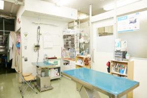 長居 動物 病院